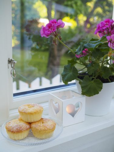 Saftiga glutenfria vaniljmuffins med rabarber