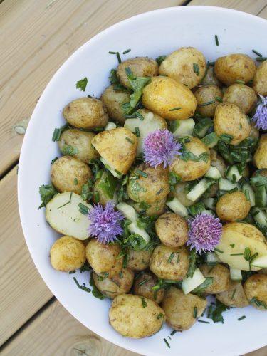 Grön potatissallad med laxsida och örtsås